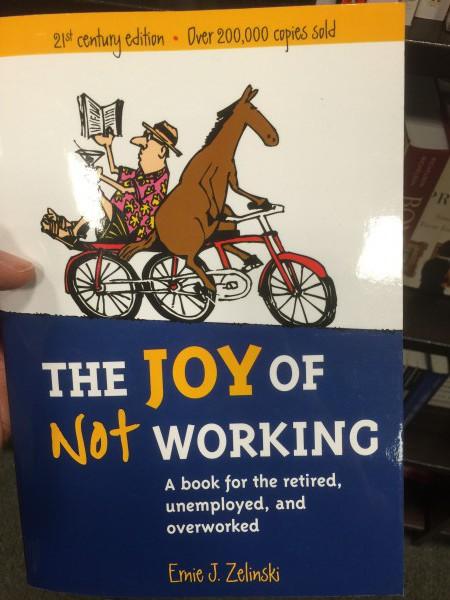 Im Buchhandel gibt es massenweise solche Bücher: Spass haben nicht zu arbeiten. Mit Freude in den Vorruhestand. Schnell Reich in Rente...