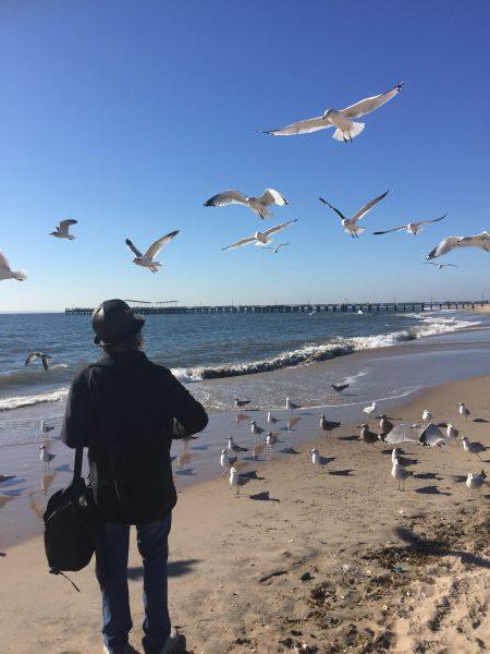 Ich war gestern mit einem Freund aus Studienzeiten am Strand in New York. Wir sahen diesen Herrn, der die Möven fütterte. Das sah Herrlich aus.